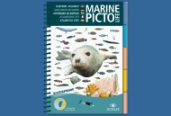 Marine PICTOLIFE Eastern Atlantic